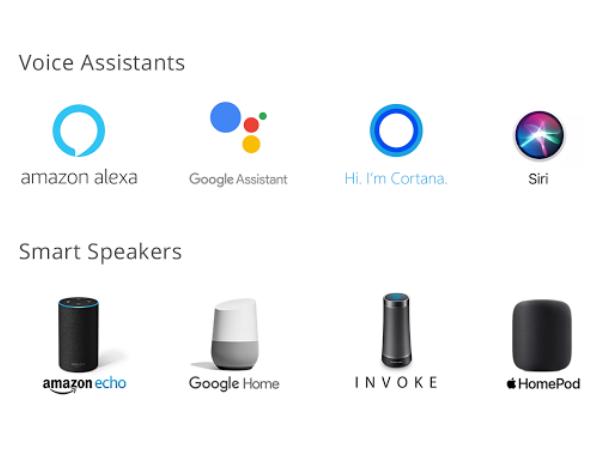 Google voice search optimization